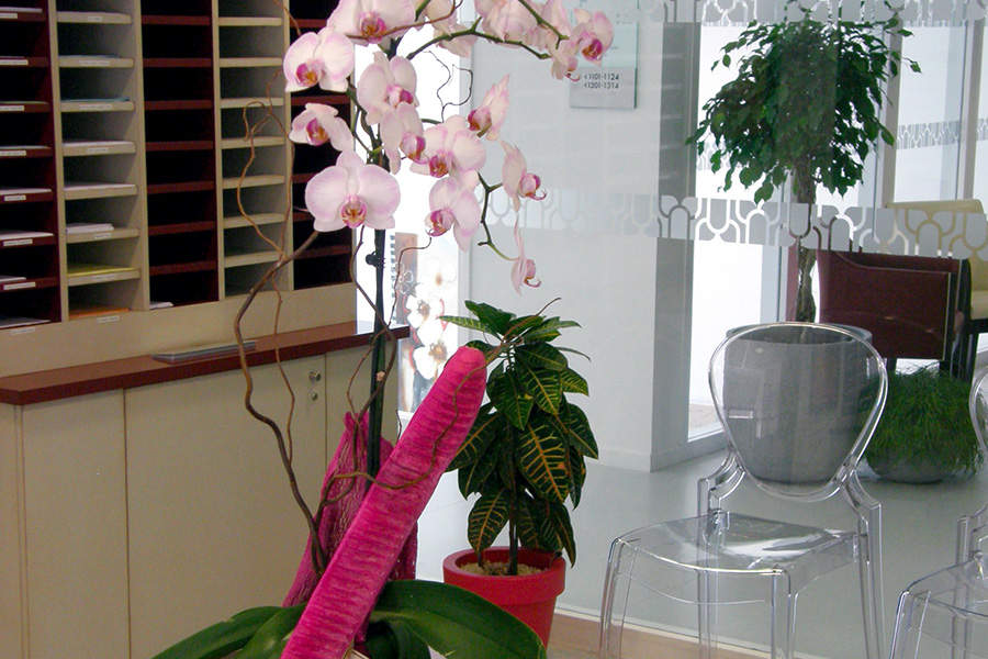 fleuriste en vendée pour les professionnels